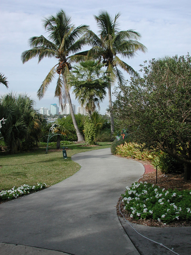Walkway at Marie Selby Botanical Gardens