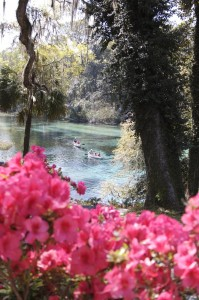 Rainbow Springs state park - Headwaters of Rainbow River. Note canoeists on the river. Photo By Lucy Beebe Tobias