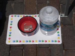 Dog friendly - dog water bowl in Sanford, Florida