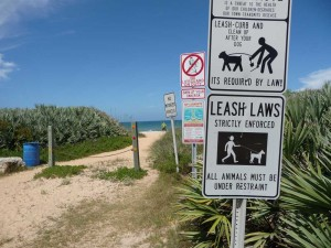 dog friendly beaches -Dog signs at Ginn Hammock Beach, Palm Coast Florida
