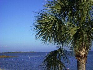 Funky Florida - Cedar Key City Park