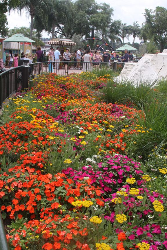 Superbe Garden Festivals   Epcot