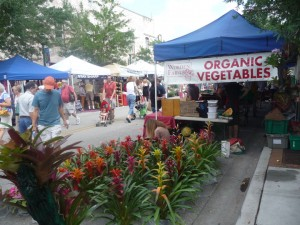 visit Sarasota - downtown Saturday farmers market