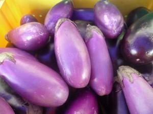 Visit Sarasota - farmers market