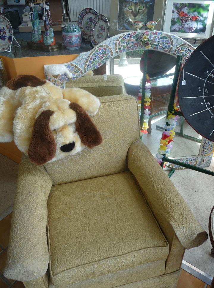 Thrift Craft Shop Florida