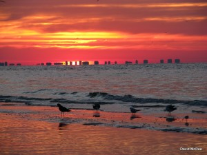 Floarida beaches - sunset