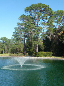 Pond at Sholom Park, Ocala. Photo by Lucy Beebe Tobias