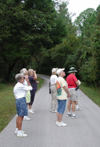 BIrds - Birders on Pepper Creek Trail. Homosassa Springs Wildlife State Park