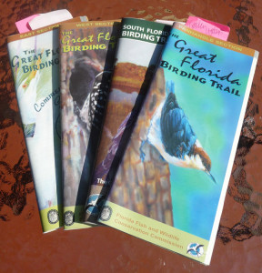 birds - the Great Florida birding trail section guides