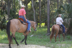 horseback riding - on the trail at Silver River State Park, Ocala