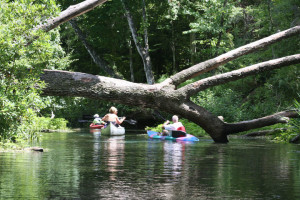 Florida's Outdoor Coolest spots - canoeing at Alexander Springs