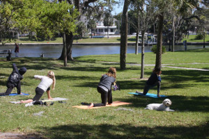 Go Greek - yoga in the park