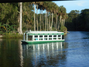 Florida state parks - silver springs