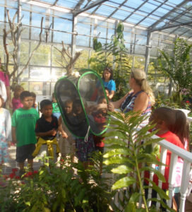 Visiting Florida Butterfly Gardens Could Be Sinful Lucy Tobias